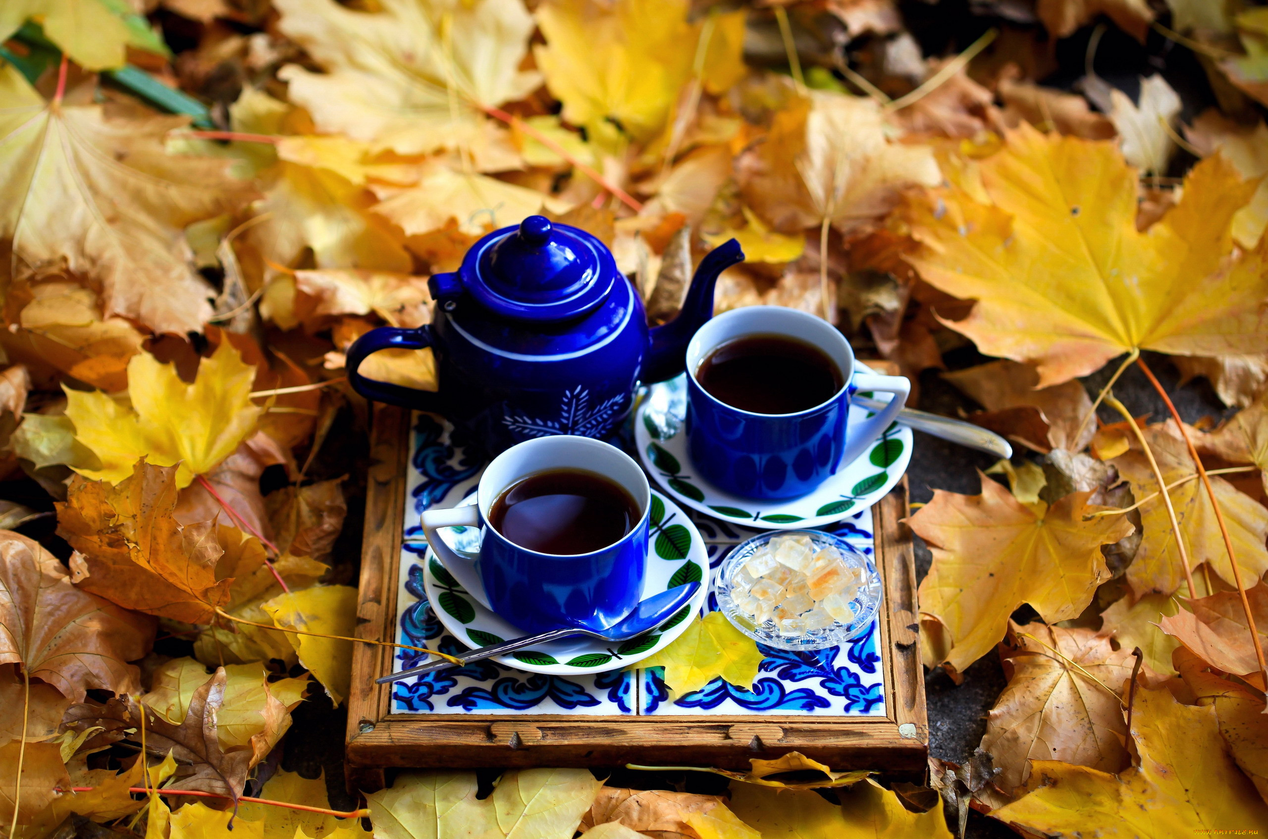 картинки осень кофе листья эту минуту